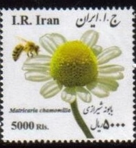 Scott #3145, Medical Flowers, 5000 Rial, square <p> <a href=&quot;/images/Iran-Scott-New-43.jpg&quot;> <font color=green><b>View the image</font></a></font>