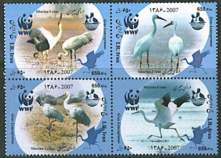 "Scott #2936 Siberian Crane, WWF, Sept 9  <p> <a href=""/shop/catalog/images/Iran-Scott-2936.jpg"">   <font color=green><b>View the image</b></a></font>"