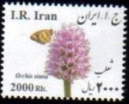 Scott #New Issue 2016-45, Medical Flowers, Orchis simia, 2000 Rial, small size <p> <a href=&quot;/images/Iran-Scott-New-2015-45.jpg&quot;> <font color=green><b>View the image</font></a></font>